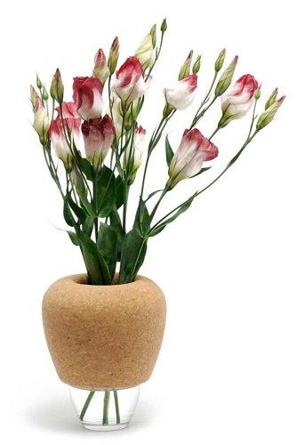 Kambarinės gėlės ir sveikata