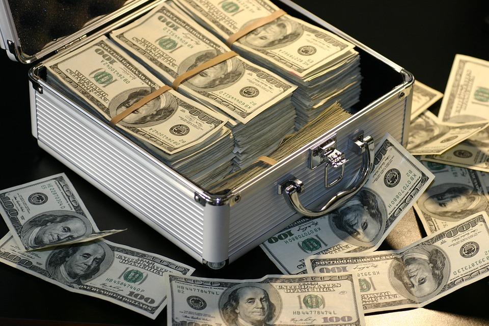 Vagys šluoja viską: nuo pinigų iki papūgų