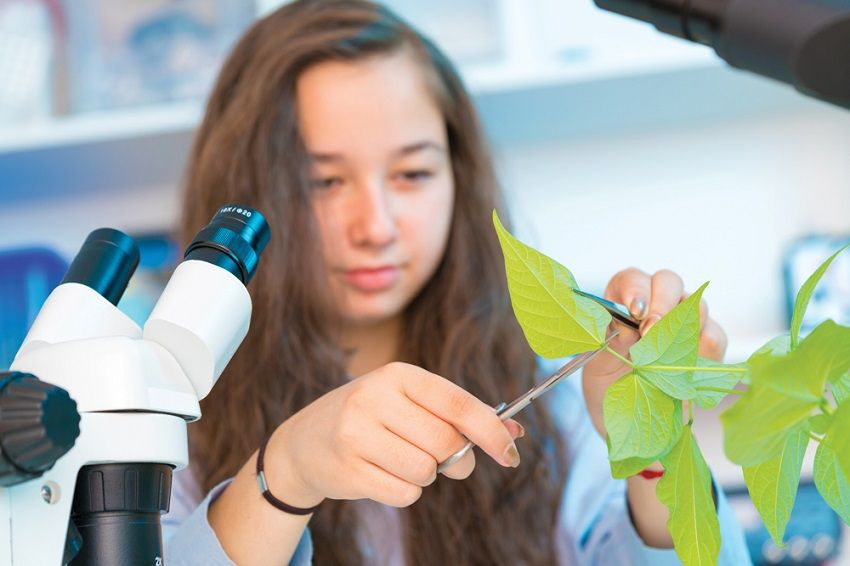 Mokomės kitaip: kūrybiškos biologijos pamokos