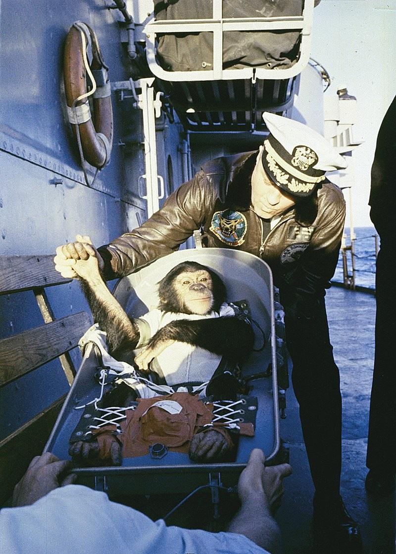 Beždžionės į kosmosą pakilo anksčiau už žmogų