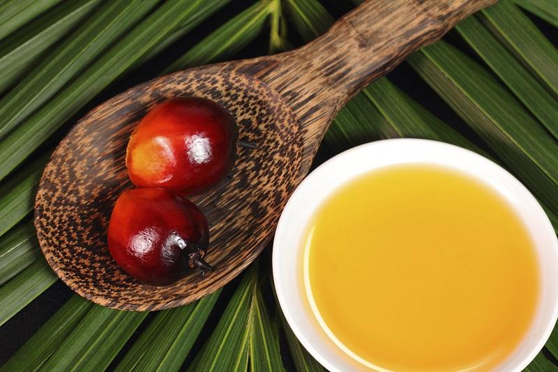 Palmių aliejus: ar visos baimės pagrįstos?