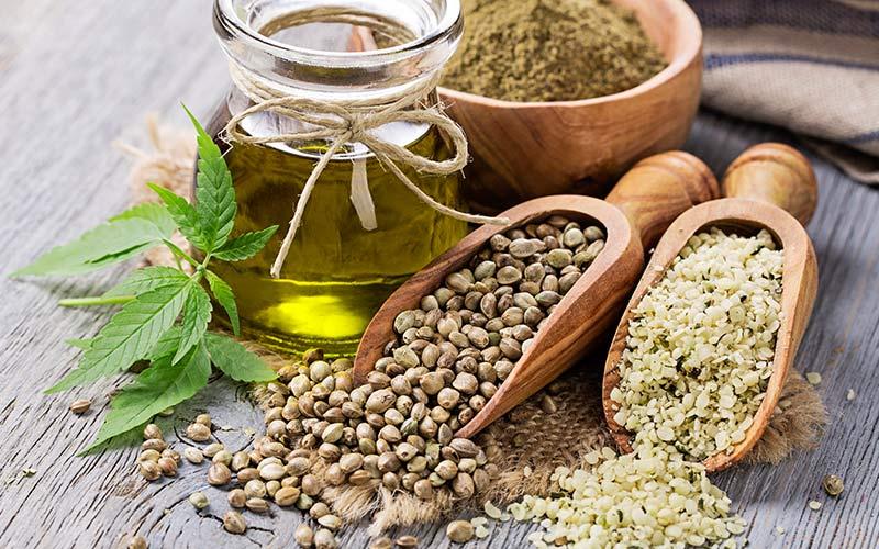 Kanapių sėklos – energijos ir vitaminų bombos