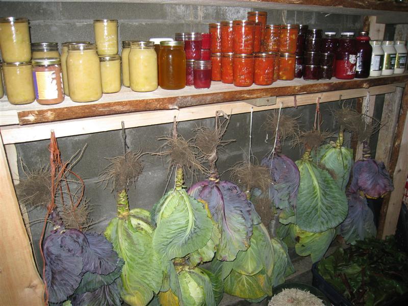 Vasaris - tinkamas metas revizijai daržovių rūsyje