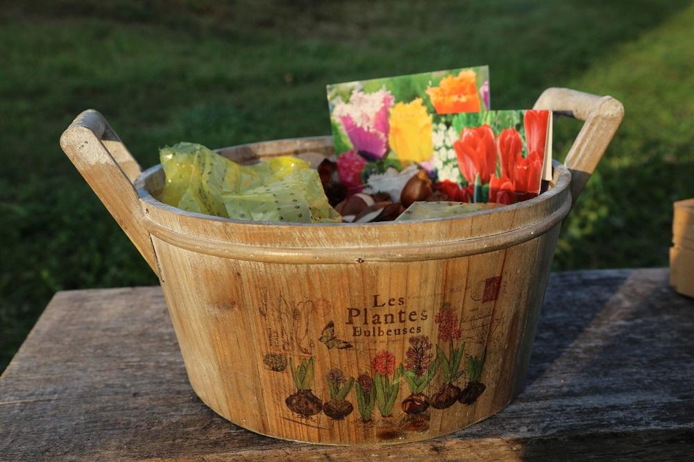 Sodą puošiančios tulpės: laikas planuoti pavasario grožį