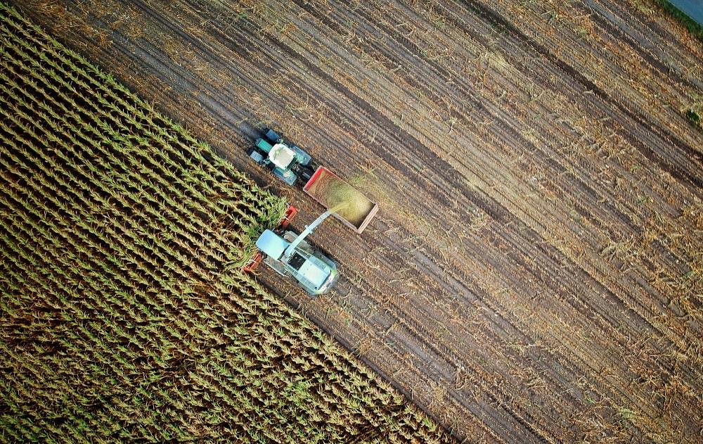 Lietuvos žemdirbių tikslas – Europos Sąjungos vidurkį siekiančios tiesioginės išmokos