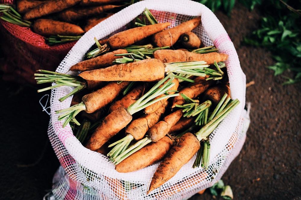 Patarimai sodininkams: laikas sėti morkas?