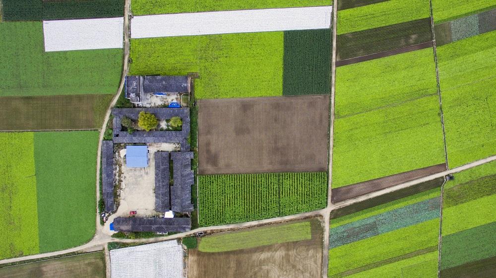 Žemės ūkio ministerijai – prašymas atpiginti ekologinės gamybos sertifikavimą