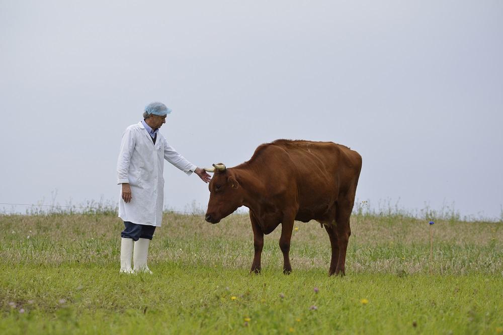 """Italiją į Lietuvą išmainęs sūrių gamintojas A.Frozijus: """"Esu pusiau rokiškėnas"""""""
