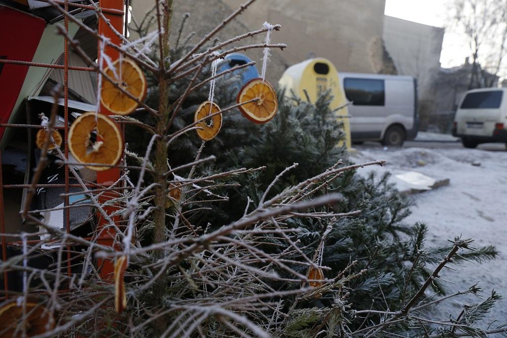 Už ne vietoje išmestas kalėdines eglutes gali grėsti bauda iki 600 eurų