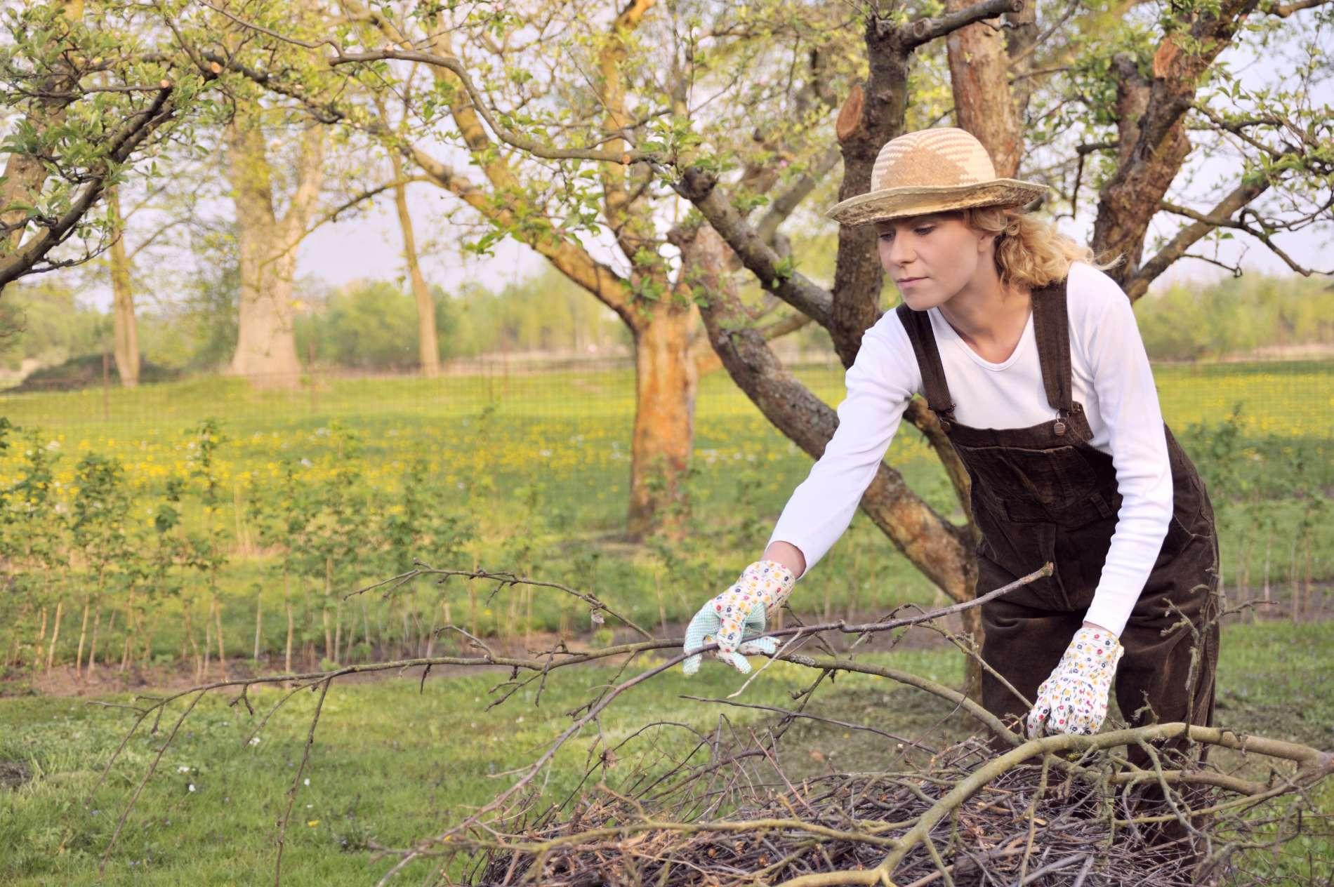 Teks pasiraitoti rankoves: kokius darbus sode reikia nuveikti pirmiausia?