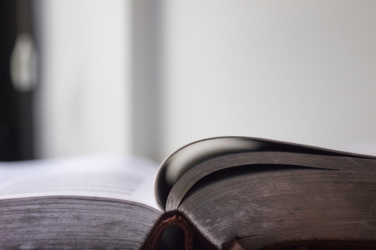 Teisininko konsultacija: vaiko raida, testamento užginčijimas ir namo pardavimas esant kitiems bendraturčiams
