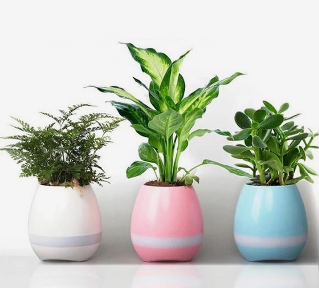 Neskubėkite atsikratyti pernykštės žolės: iš jų galima pasidaryti vazonus