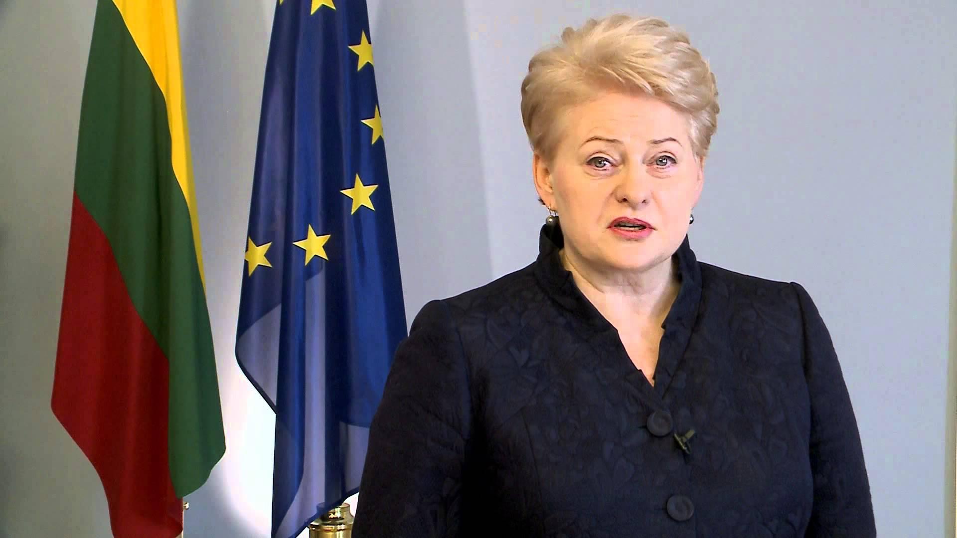 """D.Grybauskaitė: """"Europos Sąjunga - mūsų politinio, socialinio ir gynybinio saugumo garantas"""""""