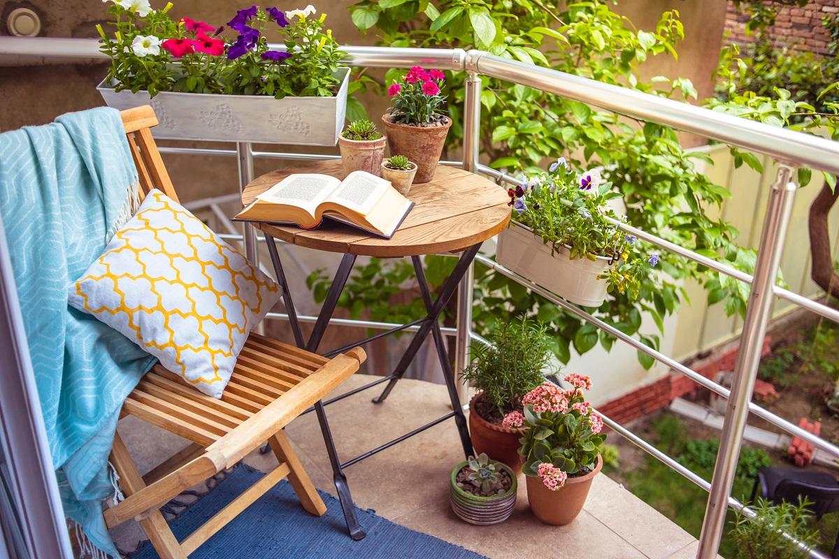 """""""Namie ir Sode"""" aktualijos: balkonų gėlės, skiepytų daigų pasirinkimas ir lauko agurkai"""