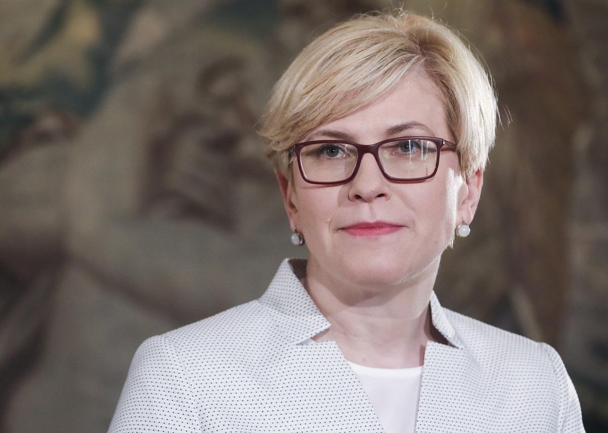 Politologas: konservatoriai taupo I.Šimonytę artėjantiems 2020 m. Seimo rinkimams