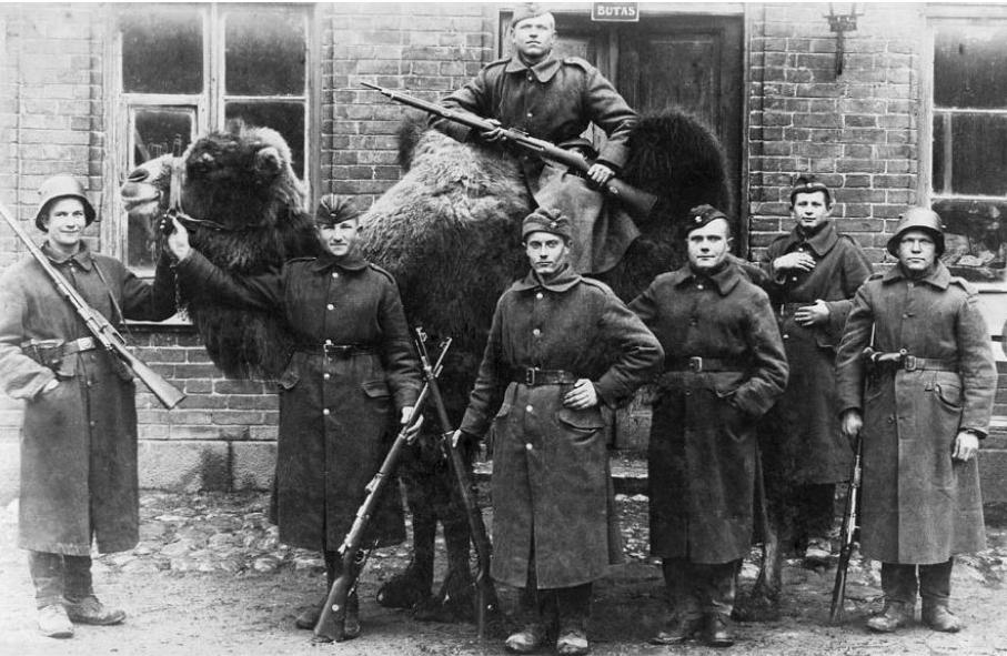 Įdomioji istorija: Lietuvos išvadavimas iš bolševikų