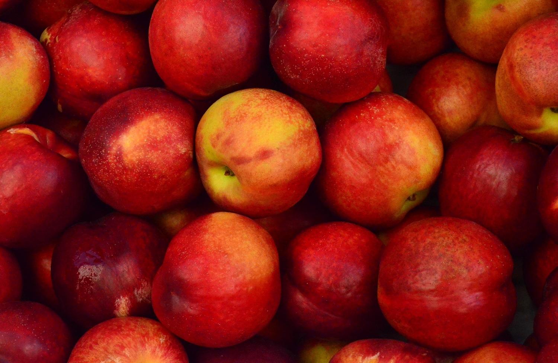 Dėl pavasarinių šalnų obuolių ir uogų perdirbimui supirkta beveik 4 kartus mažiau
