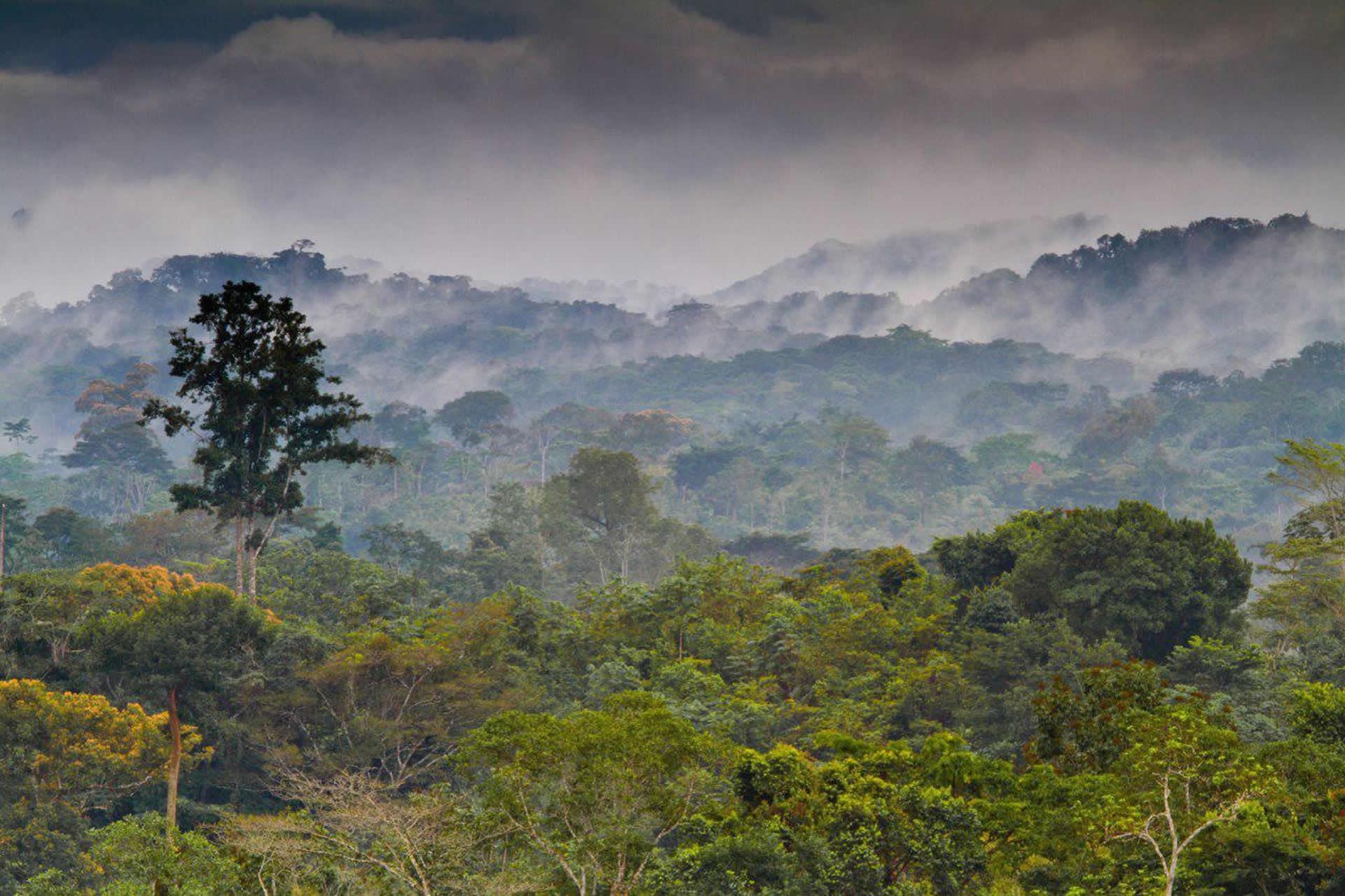 Pusiaujo Gvinėja – skurdi turtuolė, valdoma ekscentriškų diktatorių