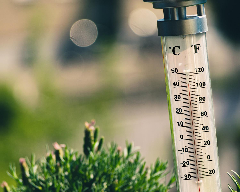 Mokslininkai: metinės temperatūros kilimas bus pažabotas, jei sumažės žemės ūkio sektoriaus tarša