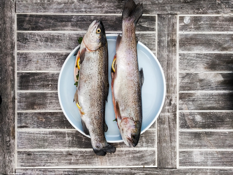 Nyksta žuvys: ko artimiausiais metais gali nelikti ant mūsų stalo?