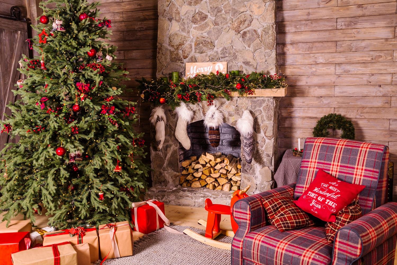Belaukiant švenčių: kaip išsirinkti ir prižiūrėti kalėdinę eglutę?