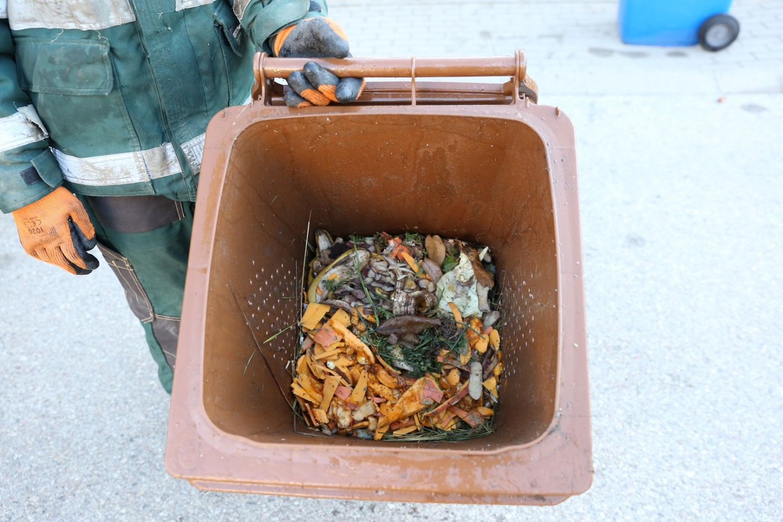 Šiandienos aktualijos: šauktiniai, parama vaikus auginančioms šeimoms ir neatrastas maisto atliekų rūšiavimas