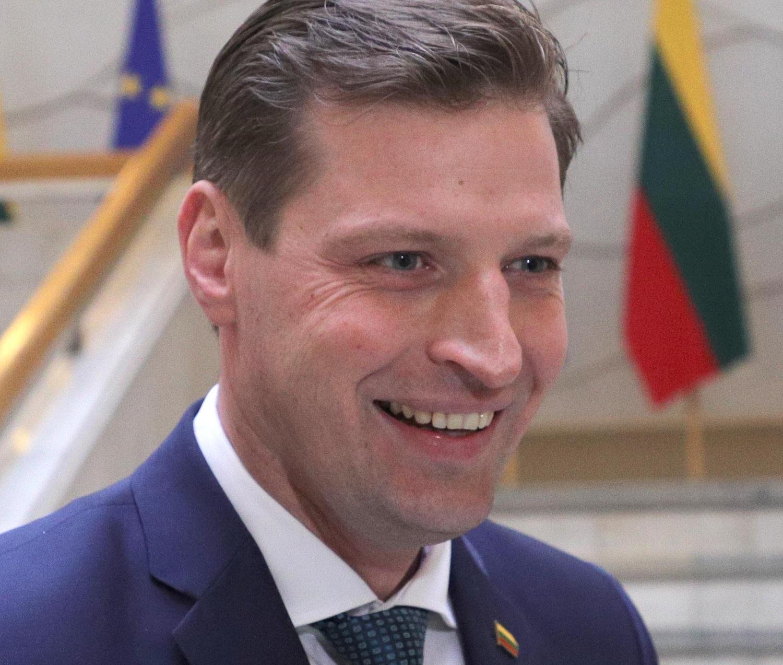 K. Mažeika: VTEK sprendimas dėl J. Narkevičiaus padidins biurokratiją