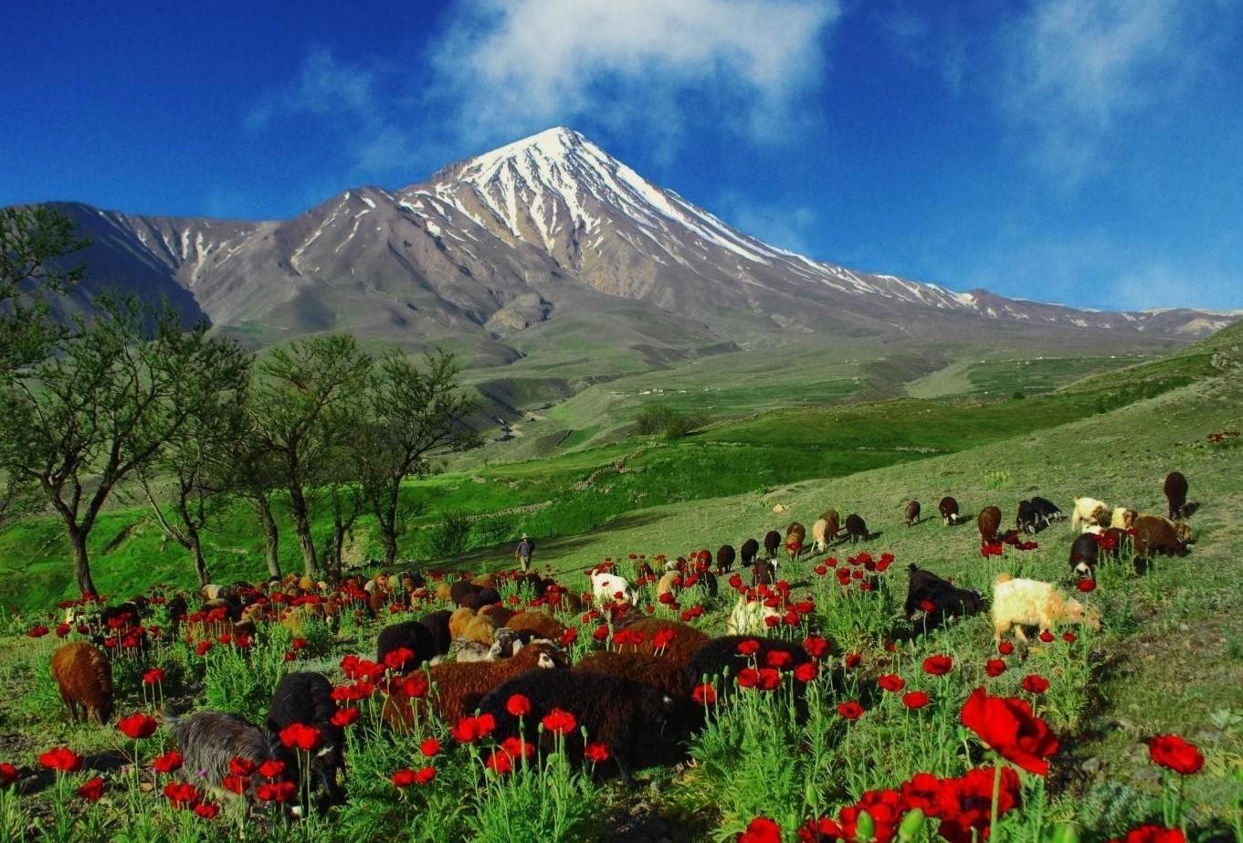 Iranas – išskirtinės istorijos ir žiaurių įstatymų šalis