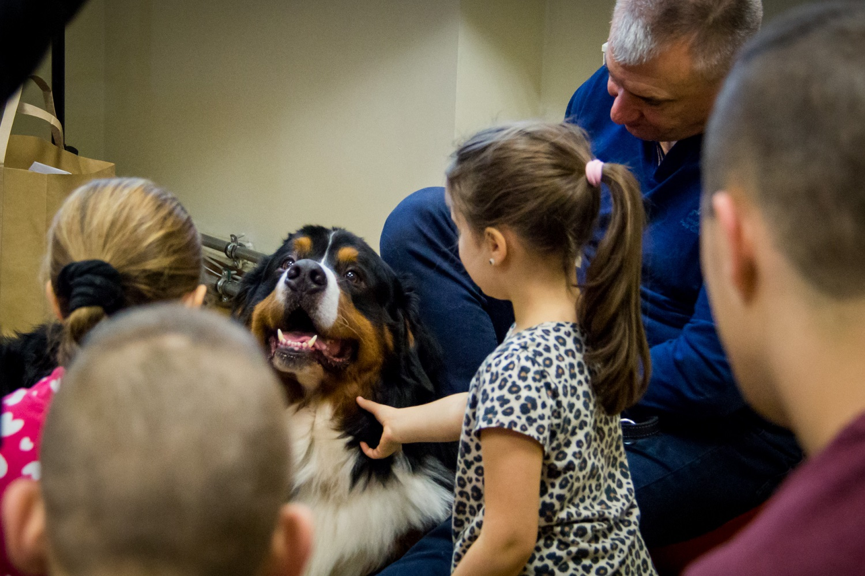 Šuo – ne tik geriausias draugas, bet ir terapeutas