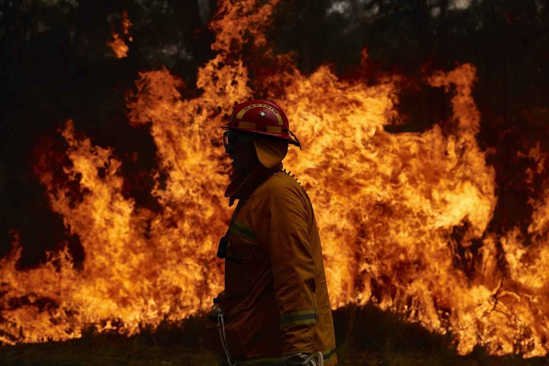 Australijos krūmynų gaisrai paveikė tris ketvirtadalius gyventojų