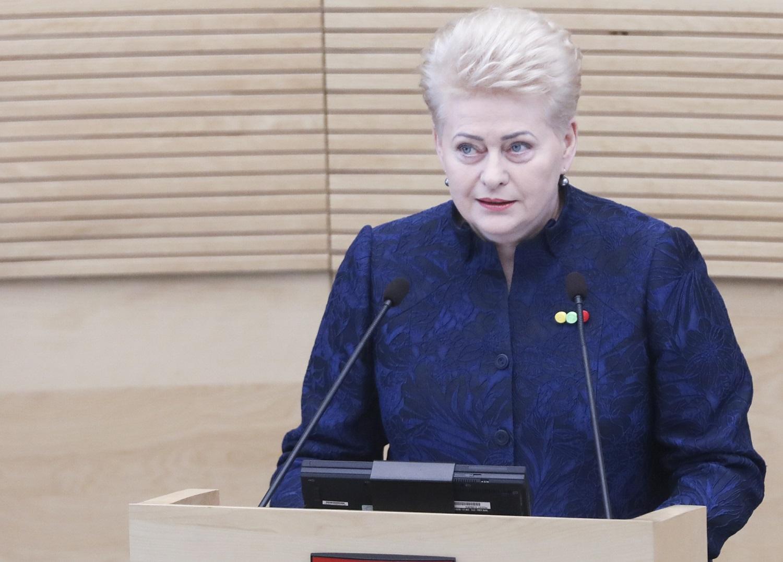 D. Grybauskaitė: klaidų darymas suprantamas, tačiau jų neigimas – nusikalstamas