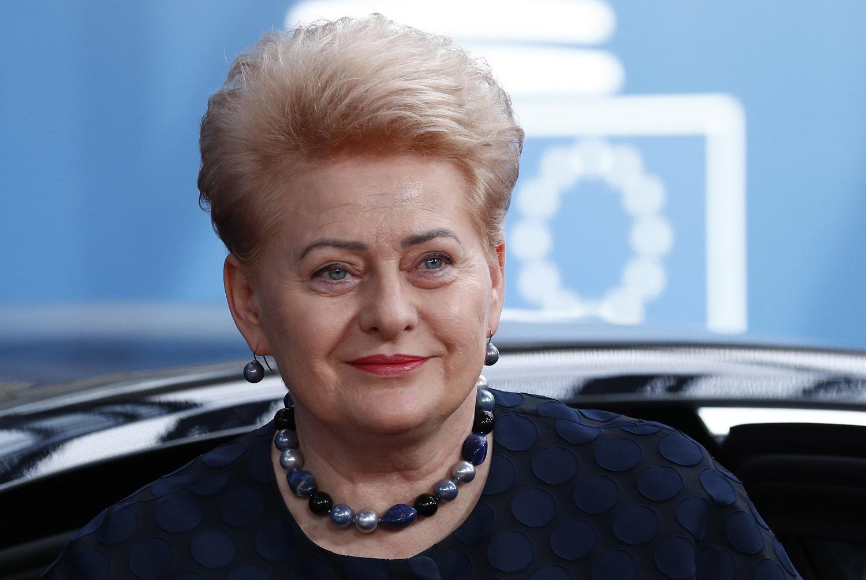 Prezidentė D. Grybauskaitė pradėjo vadovauti JT įsteigtai aukšto lygio komisijai