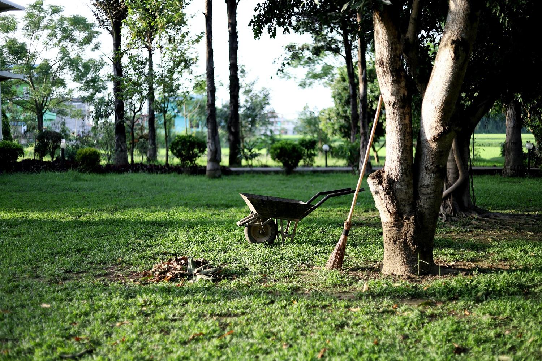 Karantino metu – į sodą ir kiemą: ekspertų patarimai, kaip saugiai tvarkyti žaliąsias atliekas