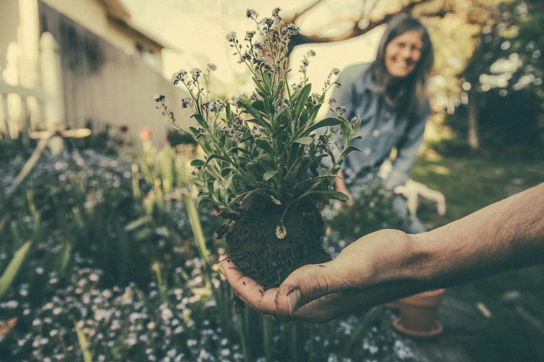 Svarbiausi gegužės mėnesio darbai sode ir darže