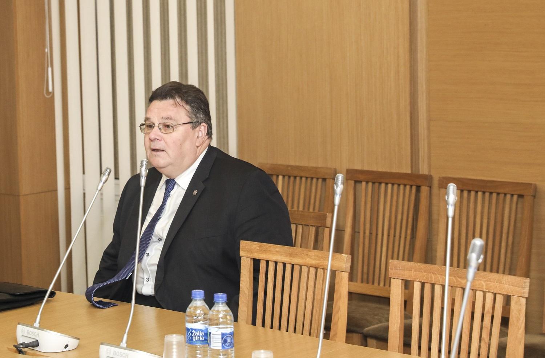 L. Linkevičius: rinkimai Baltarusijoje gali būti konkurencingesni