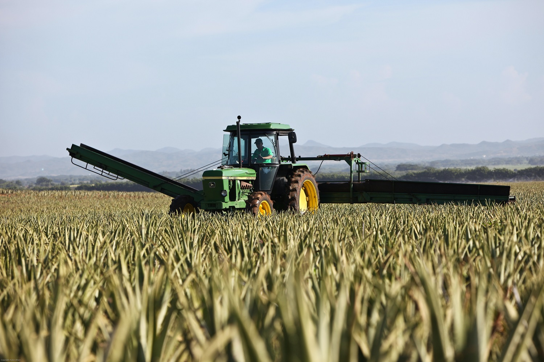 Prezidentūra: reikia rasti sprendimus, kaip stiprinti žemės ūkį, kartu gerinant situaciją Baltijos jūroje