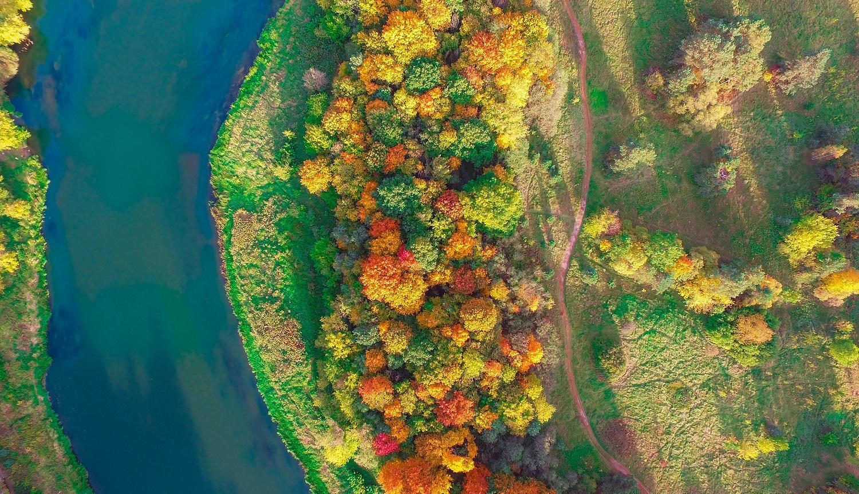 Miškais išeina ruduo: neatrastos vietos po atviru dangumi saugiam laisvalaikio praleidimui