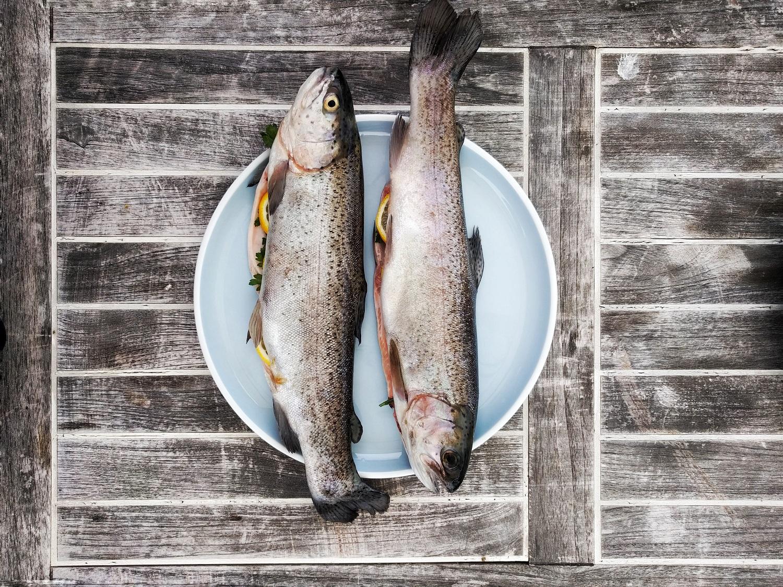 Specialistai pataria, į ką atkreipti dėmesį perkant šviežią žuvį