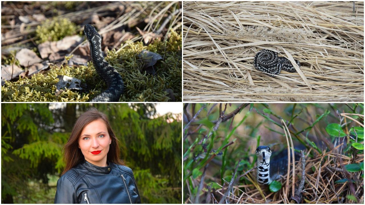 Gamtos fotografei gyvatės – nuostabūs padarai