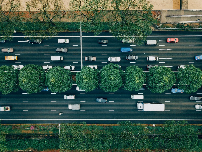 Draudikai įvardijo, kokie automobiliai dažniausiai nukenčia nuo ilgapirščių