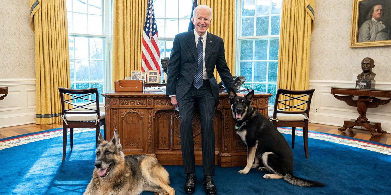 J. Bideno šunys Baltuosiuose rūmuose nepritapo