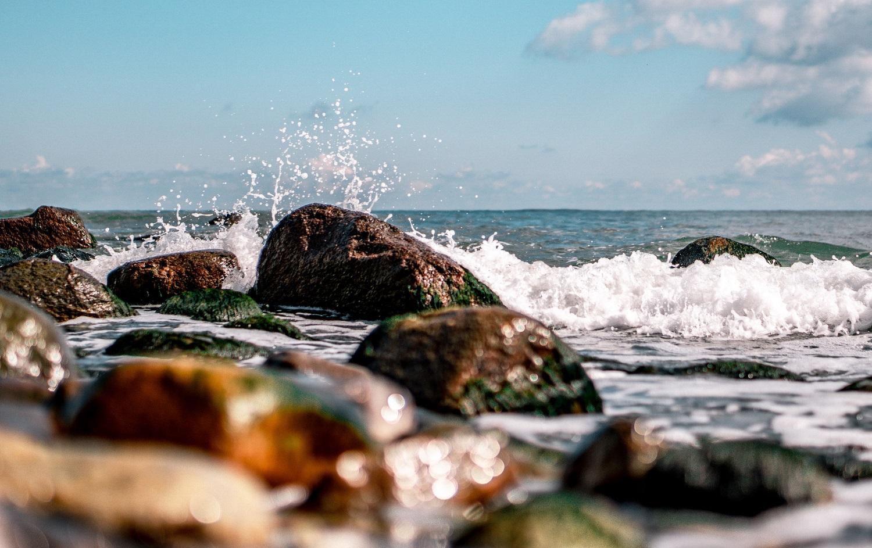 Europos Parlamentas ragina gelbėti Baltijos jūrą