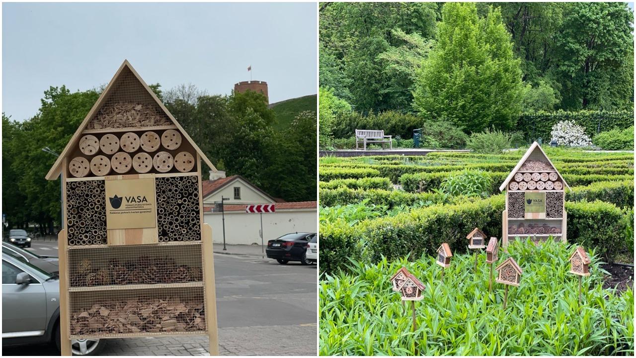 """Vilniaus parkuose """"išdygo"""" nauji vabzdžių viešbučiai"""