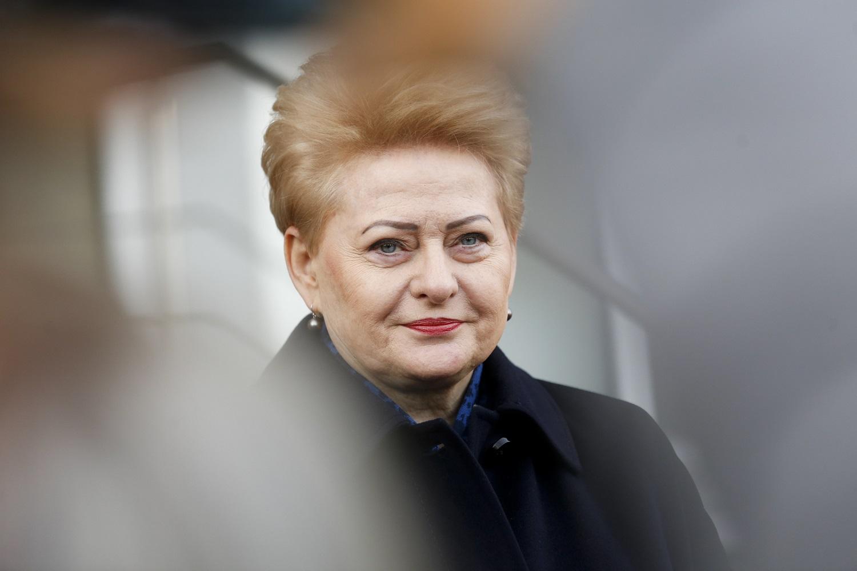 D. Grybauskaitė paprieštaravo G. Nausėdai: Lietuvoje lyderystės nematome visuose valdžios lygmenyse