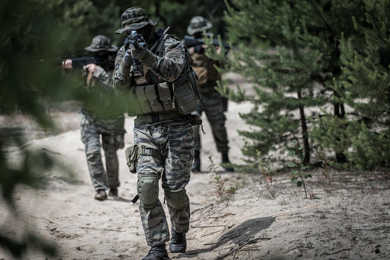 """V. Čmilytė-Nielsen: artėjant """"Zapad"""" pratyboms, Lietuva gali sulaukti ir daugiau provokacijų"""