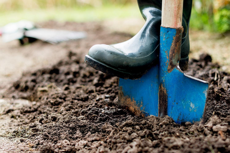 Sodo darbai rudenį: 10 dalykų, kuriuos būtina padaryti prieš žiemą
